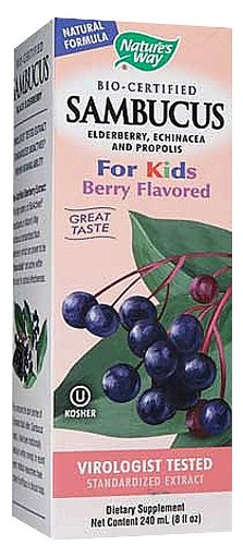 Nature's Way Sambucus Kids Syrup Berry — 8 fl oz