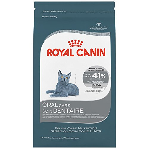 Canine Oral Care - 1