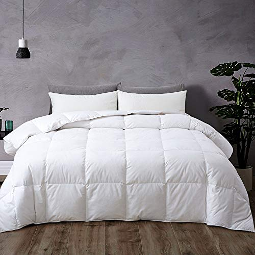 Airytex Goose Duck White Down Feather Comforter-Duvet Insert-Quilted Comforter with Corner Tabs -100% Cotton- Warm Fluffy Hypoallergenic for All Season(Queen/Full 90x90 inches) Black Friday & Cyber Monday 2018