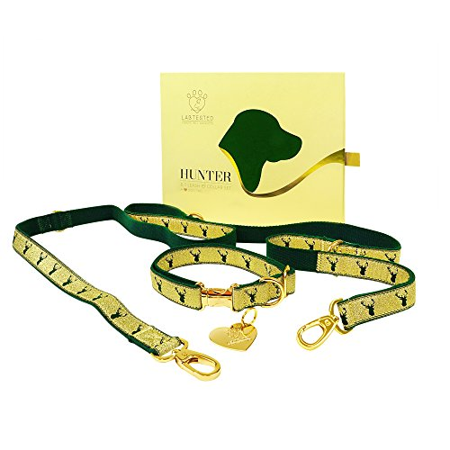 - Hunter 6:1 Leash & Collar set with heart shaped dog tag (Gold)
