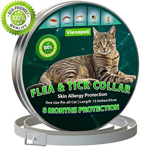 🥇 Collar antipulgas y garrapatas para Gatos