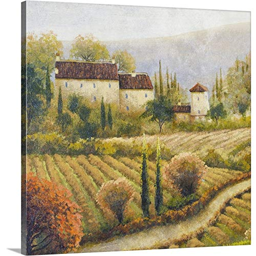 Michael Marcon Premium Thick-Wrap Canvas Wall Art Print entitled Tuscany Vineyard I (Vineyard Hill Collection)