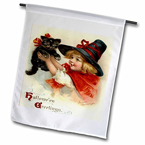 [3dRose fl_47024_1 Halloween Greetings-Cat, Cute, Girl, Costume, Halloween, Trick or Treat, Witch Garden Flag, 12 by] (Trick Or Treat Costumes Images)