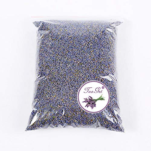 TooGet Fragrant Lavender Buds Organic Dried Flowers Wholesale, Ultra Blue Grade - 1 Pound (Dried Flower Buds)