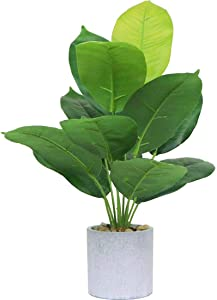 Artificial Banana Potted Fake Bird of Paradise Stems Leaves Tropical Palm Plants Greenery Plant with Pot for Indoor Office Home and Office Decoration 17.8