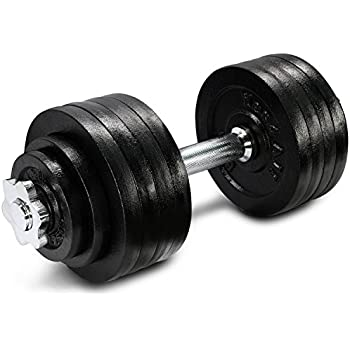 52.5 lbs Adjustable Cast Iron Dumbbell - ²DL2ZZ
