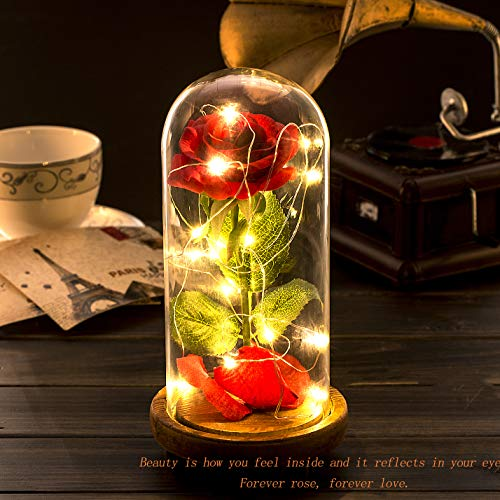 Beauty and The Beast Rose Kit, Red Silk Rose and Led Light with Fallen Petals in Glass Dome on Wooden Base for Home…