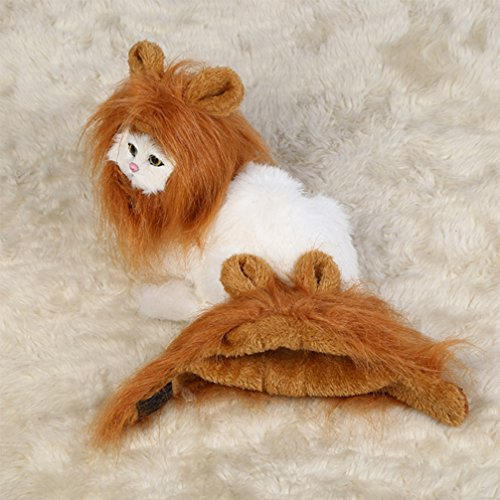 Cat-Costume-Lion-Mane-Wig-for-Little-Puppy-Cat-Pet-Hair-Wig-Toy-Halloween-Christmas-Easter-Festival-Party-Activity-Dress-up-with-Ears