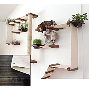 Catastrophicreations Cat Gardens Wall Mounted Climb And Play Furniture Cat Tree Shelves With Planter For Grass English Chestnut Natural One Size