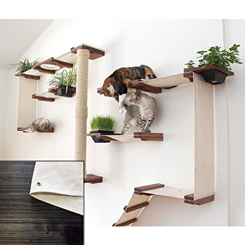 CatastrophiCreations Cat Mod Garden Complex Handcrafted Wall Mounted Cat Tree Shelves with Planter for Cat Grass, Onyx/Natural, One Size