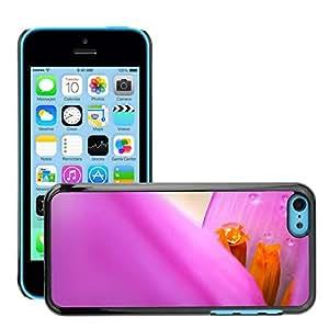 Print Motif Coque de protection Case Cover // M00154419 Árbol del papel pintado de la hoja de // Apple iPhone 5C