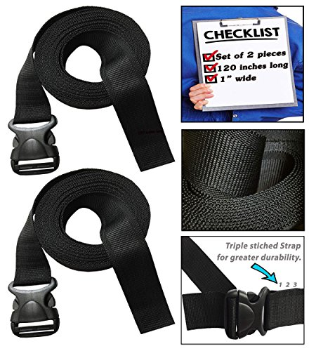 333 World - Strap 1 Inch Wide with Plastic Quick Release Buckle for Lashing Strap, Backpack, Camping, Sleeping Bag, Air Mattress, Luggage Straps, Automotive. Set of 2. (Jacket Sunglasses Monkey)