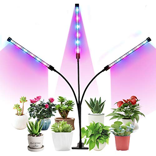 Blue And Red Led Grow Lights in US - 9