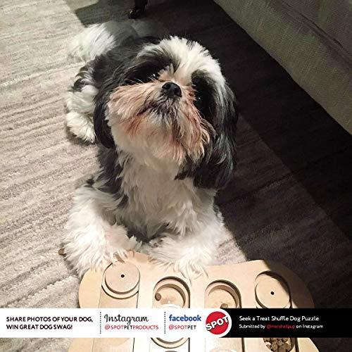 Rompecabezas de juguete con hueso ósea de búsqueda y tratamiento interactivo de SPOT Ethical Pet que mejorará el coeficiente intelectual de tu perro, especialmente diseñado para adiestrar golosinas