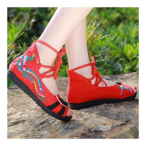 Mariposa Phoenix Rojo Bordados de y Zapatos y Bonitos Elegantes wfqXx0TxA
