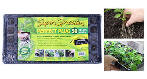 national-garden-wholesale-super-sprouter-perfect-plug-custom-blend-propagation-tray