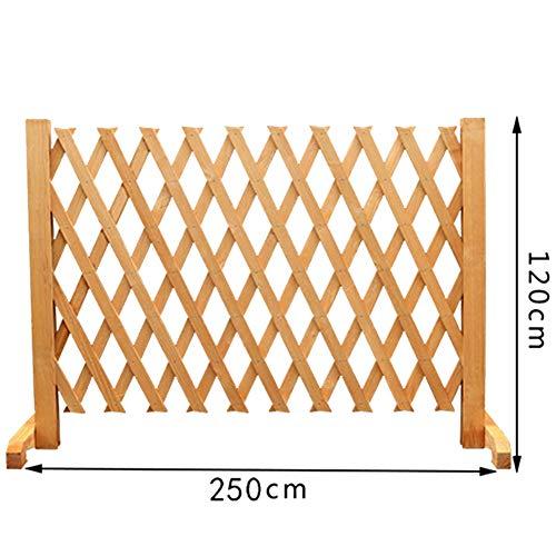 JIANFEI-weilan Garden Fence Screen Garden Decoration Flower Bed Edge Plant Climbing Frame Can Stretch, 5 Sizes,2 Colours (Color : Brass, Size : 250x120cm)