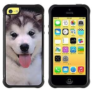 Fuerte Suave TPU GEL Caso Carcasa de Protección Funda para Apple Iphone 5C / Business Style Husky Siberian Dog Cute Puppy