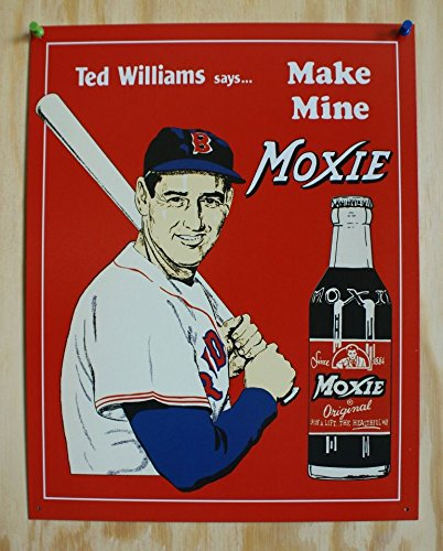Ted Williams Tin Metal Sign : Make Mine (Baseball Metal Sign)