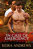 #7: In Case of Emergency: Gay Christmas Romance