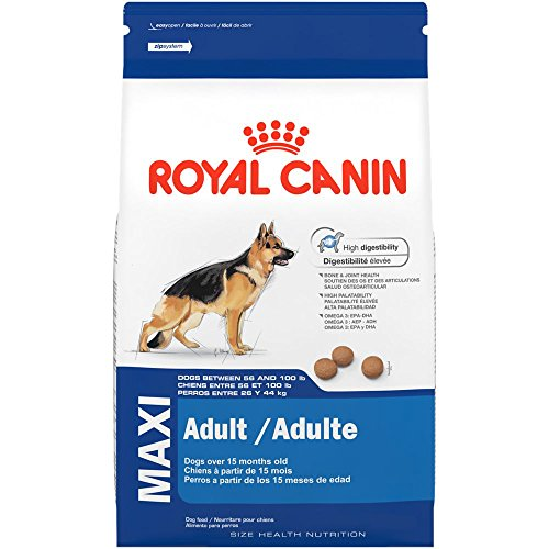 ROYAL CANIN SIZE HEALTH NUTRITION MAXI Adult dry dog food, 35-Pound