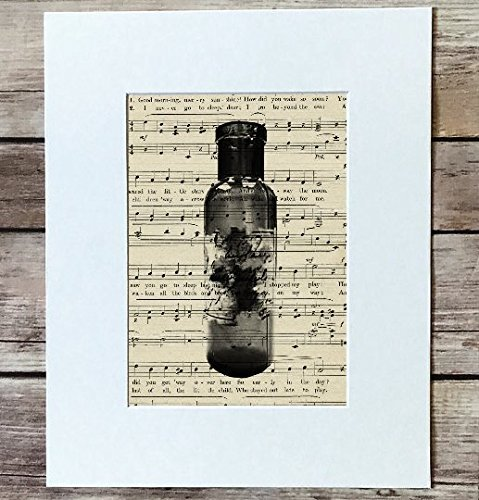 - Upcycled Medicine Bottle Print 5x, 7 or 8x10 Matted, Antique Sheet Music Print, Line Art Alchemy Print, Vintage Sheet Music, Upcycled apothecary print, pharmacy print