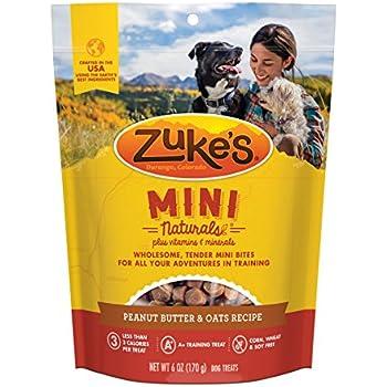 Amazon com : Nutro Crunchy Dog Treats With Real Peanut