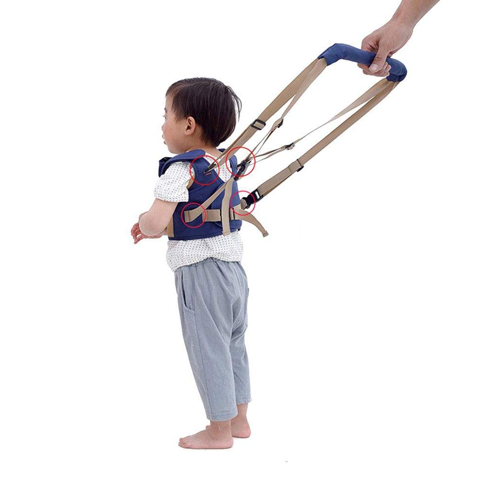 Modenny Baby Walking Learning Belt Harness Assistant Toddler Leash for Kids Learning Walking Baby Belt Child Safety Harness Assistant