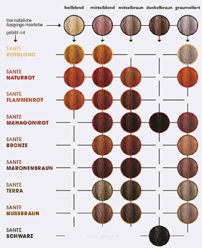 Sante Naturkosmetik Pflanzen Haarfarbe Pulver Terra Braun