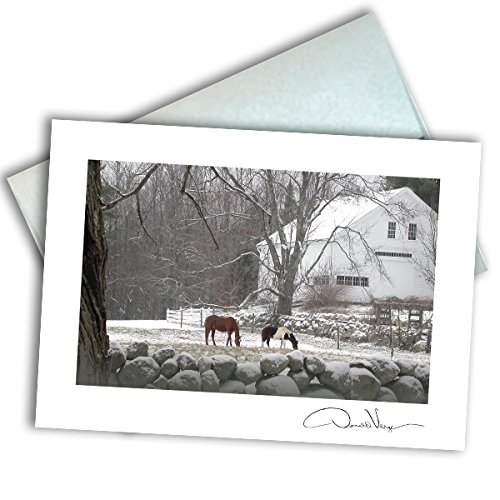 Adams Field Frame - Single Note Card. Horses in the Field. 3x5 Blank Card with Classy Envelope. Best Birthday Cards, Thank You Notes & Invitations. Unique Christmas, Mother's Day & Valentines Gifts for Women