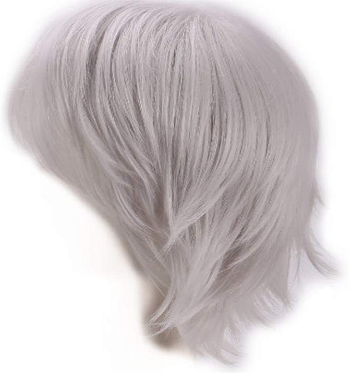 11/'/' Short Straight Layered Silver Gray Synthetic Cosplay Wig NEW