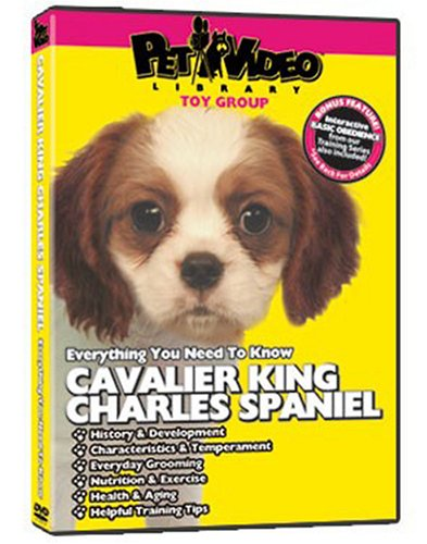 (CAVALIER KING CHARLES SPANIEL DVD! Includes Dog & Puppy Training Video )