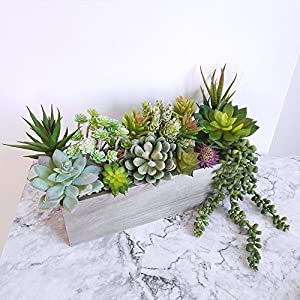 Supla Pack of 14 Assorted Artificial Succulents Picks Textured Aloe Faux Succulent Pick Succulent Stems Fake Succulent Bouquet String of Pearls Succulent Faux Succulent Floral Arrangement Accent 4