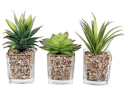 Set Di 3 Succulente Artificiali Cactus Piante Da Appartamento In