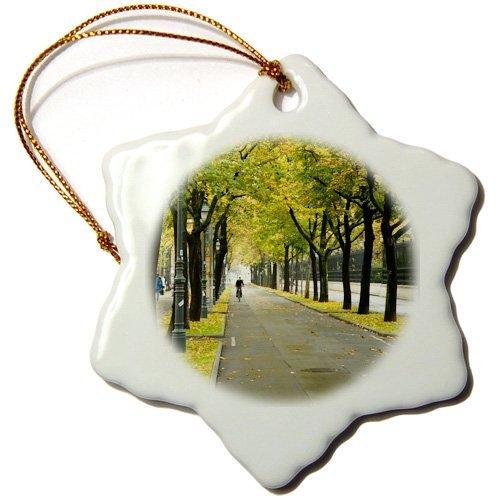 OneMtoss Copenhagen, Denmark, City Bike Path EU Ist Inti St Clair Snowflake Ornament, Porcelain