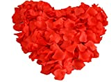 Fun Express Valentine Heart Shaped Red Rose Petals; 200 Pcs