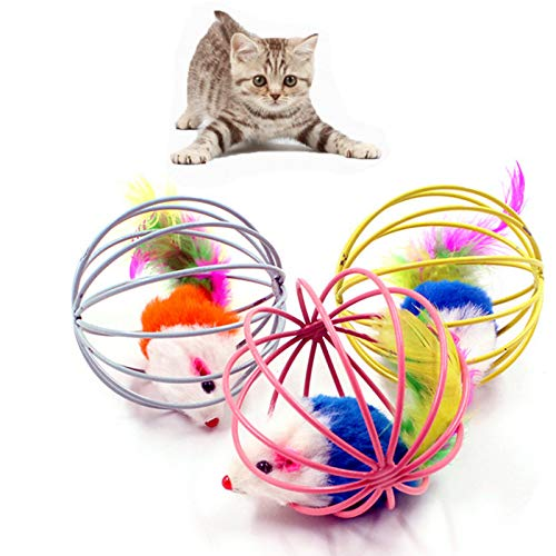 Amazon.com : Best Quality Randomly Funny pet Kitten cat Playing Mouse Rat mice Ball Caged cat Toy Home Chat Playing Toys for Cats Kitten katten speelgoed ...
