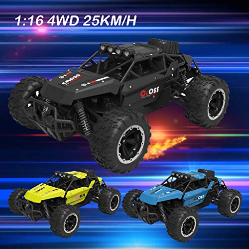 LtrottedJ 1:16 Scale RC Car 4D Off Road Vehicle 2.4G 25km/h Radio Remote Control Car (Black) for $<!--$52.89-->
