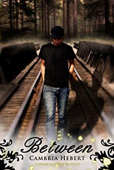 Between (Heven and Hell Series) by [Hebert, Cambria]