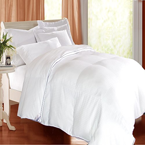Kathy Ireland Home Heirloom 1000 Thread Count Cotton Rich Swiss Dot Down Alternative Comforter, White, Twin Down Swiss Dot