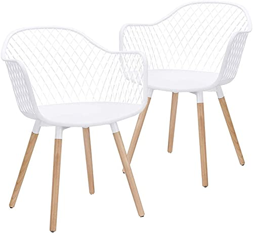 CangLong Modern w/Natural Wood Legs Easily Assemble Mid Century Molded Plastic Shell Arm Hollow Out Chair