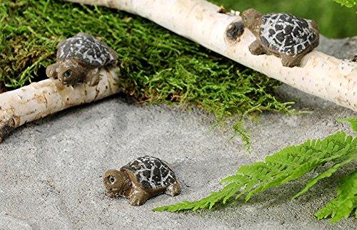 Gift Craft Mini Turtle Set