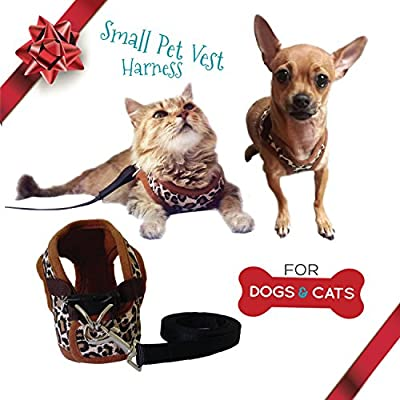 Cat Harness and Leash Set - Small Dog Vest Harness perfect for Cat or Dog Walking - Training - Escape proof Harness for Small Dogs - Choke Free harness to Prevent Injuries - Best Gift for your Pet