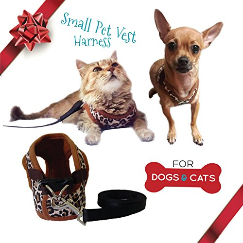 Cat-Harness-and-Leash-Set-Small-Dog-Vest-Harness-perfect-for-Cat-or-Dog-Walking-Training-Escape-proof-Harness-for-Small-Dogs-Choke-Free-harness-to-Prevent-Injuries-Best-Gift-for-your-Pet