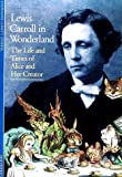 img - for Discoveries: Lewis Carroll in Wonderland (Discoveries (Harry Abrams)) by Stephanie Lovett Stoffel (1997-12-26) book / textbook / text book