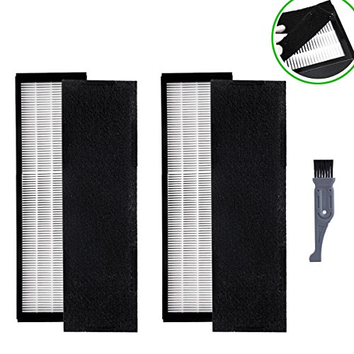 I clean 2 Packs Filter B For GermGuardian FLT4825, True HEPA Filter Replacement Fit for AC4825 AC4300 AC4800 4900 Series Air Purifiers with A Free Cleaning (2 Genuine Filters)