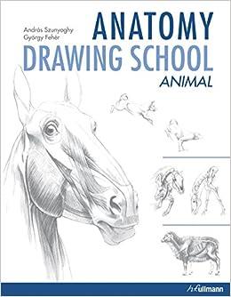 Anatomy Drawing School Animals 2 Amazoncouk Andras Szunyoghy 9783848008308 Books