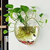 Saim Wall Hanging Flower Vase Acrylic Plants Flower Pot Aquarium Tank Transparent Fish Bowls For Home Garden Decor