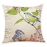 Cotton Linen Home Decorative Throw Pillow Case Pgojuni Waist Cushion Throw Pillow Case for Sofa/Couch 1pc 45X45 cm (D)