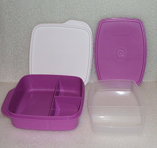 Tupperware Divided Lunch Dish Plate Plus Packette Divided Container Purple